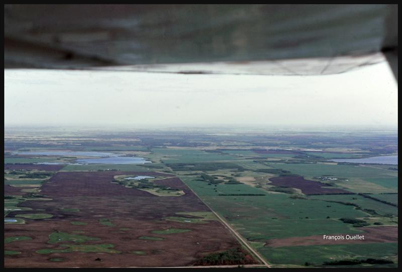 Près de Yorkton, Saskatchewan, en vol avec un Cessna C170B en 1981