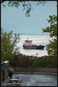 Le navire YM Saturn, de la compagnie Yilmar, approche la Ville de Québec en 2014