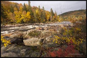 Autumne à Tewkesbury, Québec 2015