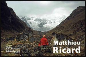 """Cover of Matthieu Ricard's book """"An Ode to Beauty"""""""