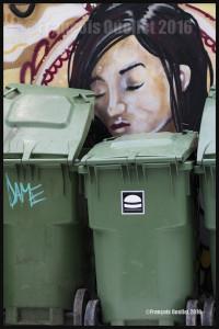 De graffitis et de poubelles à Toronto