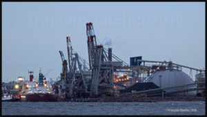 Le navire Silver Carla (Majuro) accosté au Port de Québec en mai 2016