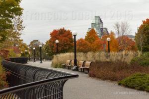 Vue d'une partie du Musée National des Beaux-Arts du Canada à partir d'un parc d'Ottawa durant l'automne 2015