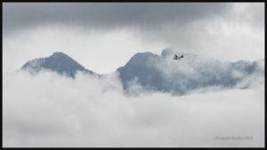 Un Beaver DHC-2 sur flotteurs de la compagnie Harbour Air au décollage de Vancouver