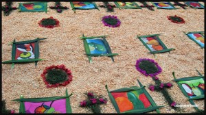 3897-Flower-carpet-in-San-Pedro-Guatemala-2014-web