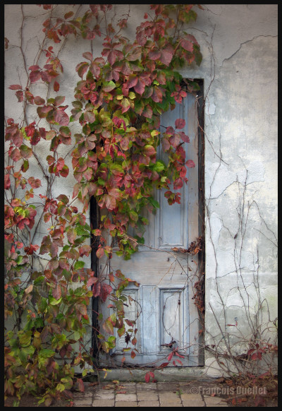 Automne-au-Bois-de-Coulonge-watermark-e1409448187552