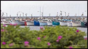 Bateaux-de-pêche-des-Îles-de-la-Madeleine-2017-web