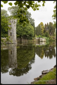 IMG_7326-Wexford-Johnstown-Castle-Ireland-2015-web