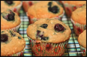 Muffins-blueberries-web