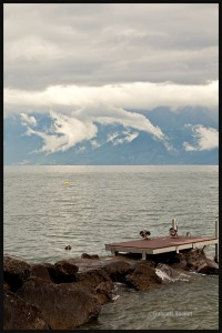 Photo-Suisse-Lac-Léman-2013-web (1)